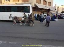 Egypte (3)