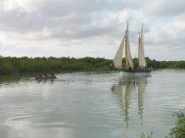 remorqueur à main pour tirer la boutre dans la mangrove