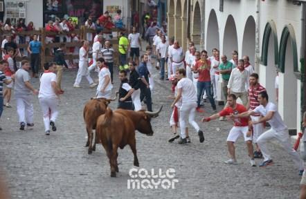 15-08-05-fiestas-de-estella-calle-mayor-comunicacion-y-publicidad- (89)