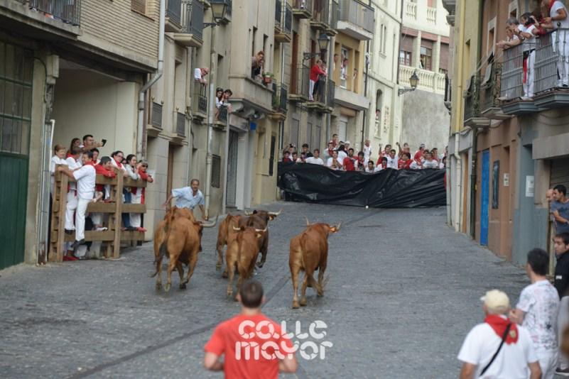 15-08-05-fiestas-de-estella-calle-mayor-comunicacion-y-publicidad- (93)