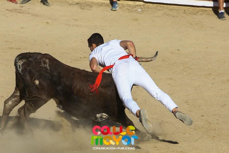 2017-08-06-FIESTAS-DE-ESTELLAS-CALLE-MAYOR-COMUNICACION-Y-PUBLICIDAD--30