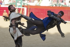 2 Semana Medieval - Estella (Navarra)