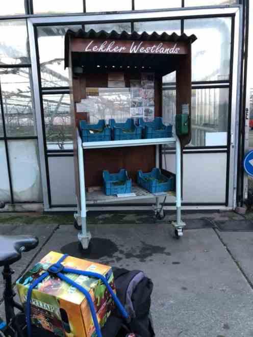 Hier hebben ze weer kasbloemkooltjes: Hoge Geest 63, Naaldwijk
