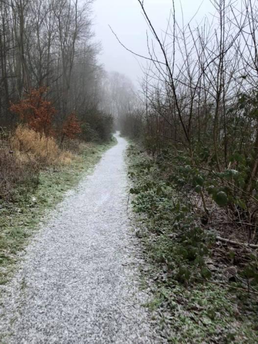 Mooie rijp op het pad bij Het Staelduinse Bos — bij Het Staelduinse Bos.