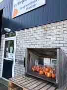 Fietstochtje dinsdag eerst stop: oranje paprika's bij Van Wingerden, Raaphorstlaan 1c, Monster