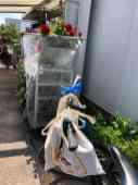 De linnen tasjes raakten al goed gevuld — bij Stichting Zorgkwekerij Mil Maasdijk.