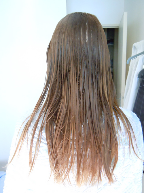I try : Le lissage brésilien homemade