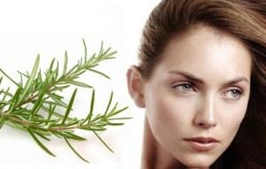Read more about the article Λάδι με δεντρολίβανο για υγιή, μακριά μαλλιά