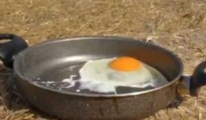 Πόσα αυγά επιτρέπεται να τρώμε την εβδομάδα;
