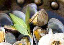 Όστρακα σκορδάτα για μακαρόνια και σαγανάκι