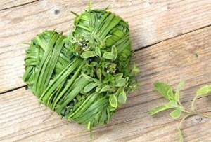 Βότανα που συμβάλουν αποφασιστικά στην υγεία της καρδιάς