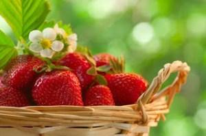 Γιατί πρέπει να καταναλώνουμε βιολογικές φράουλες. Το ισχυρό αντιοξειδωτικό…