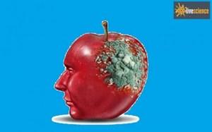 Τέσσερις τρομακτικές λοιμώξεις του εγκεφάλου