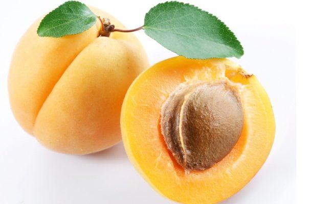Read more about the article Βερίκοκα: Τα «χρυσά αυγά του Ήλιου»