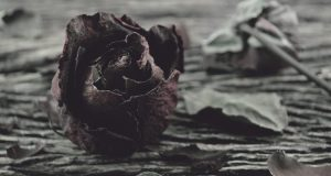 Μην επιτρέψετε στην πληγωμένη σας καρδιά να σας ορίζει
