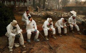 Read more about the article Ανείπωτη τραγωδία στην Καλιφόρνια με 631 αγνοούμενους