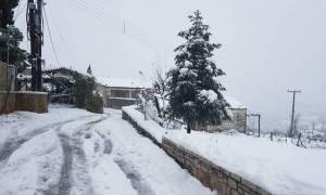 Έκτακτο δελτίο επιδείνωσης του καιρού από την ΕΜΥ: Πού θα χιονίσει