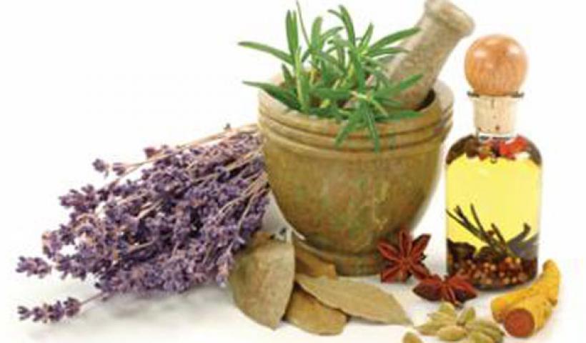 Τα βότανα και οι θεραπευτικές τους ιδιότητες