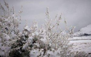 Read more about the article Καλλιάνος: Έρχονται χιόνια στο κέντρο της Αθήνας τη Δευτέρα