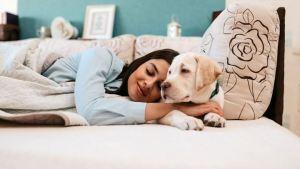 Εσείς γνωρίζετε γιατί μιλάμε στους σκύλους όπως στα μωρά;
