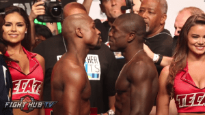 may berto weigh in stare