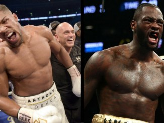 What is happening in the heavyweight boxing division in 2018?