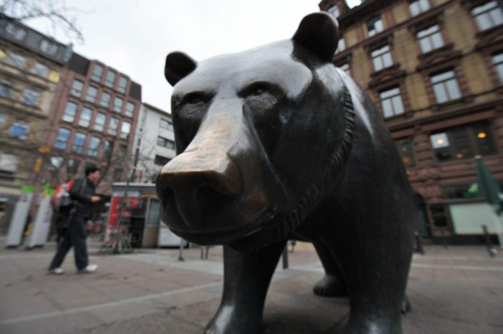 Bear is taking a peek