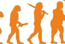 La publicación del libro de DarwinEl origen de las especies en 1859 supuso un cambio científico y social de primera magnitud.