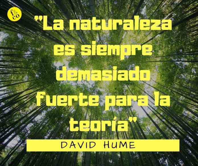 Frase-filosófica-David-Hume