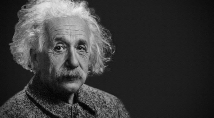 «Insistir demasiado en un sistema competitivo y especializarse prematuramente con la vista puesta en una utilidad inmediata supone la muerte del intelecto» dijo Albert Einstein.