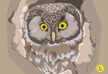 Apenas en las primeras tres páginas de la novela, se nos describe el cuidado de Azarías hacia el Gran Duque, su búho, al que reserva siempre alguna pieza de caza o, al menos, algunos gorriones cazados con atención y paciencia. Diseño hecho con una imagen de OpenClipart-Vectors en Pixabay.