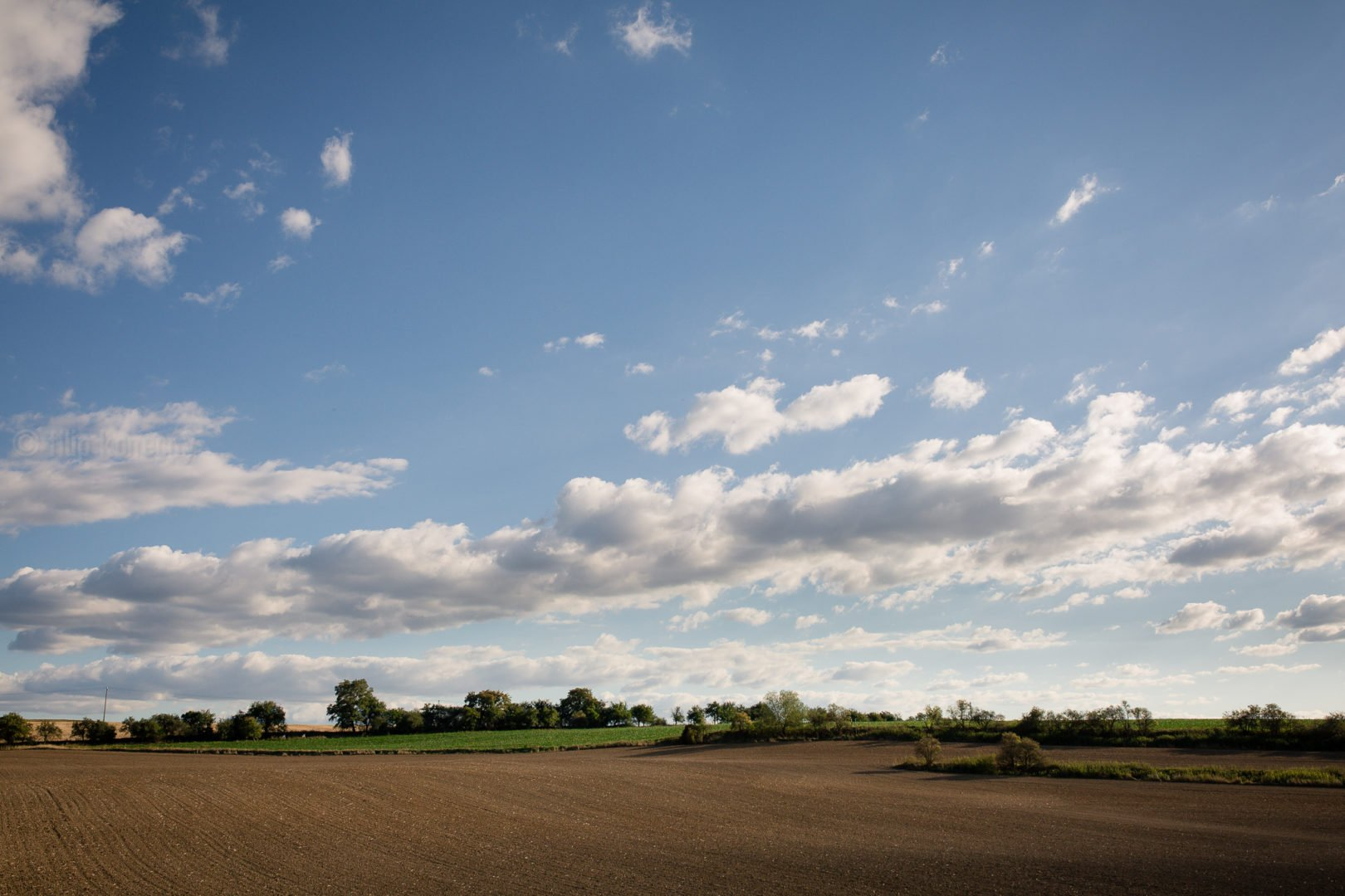 another angle of crop field landscape