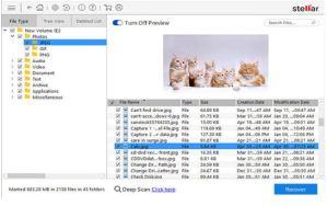 free windows recovery tool stellar