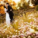 Michelle and Joel's Wedding