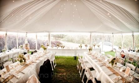 Gorgeous setup for reception