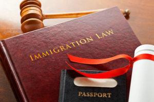 immigratio law