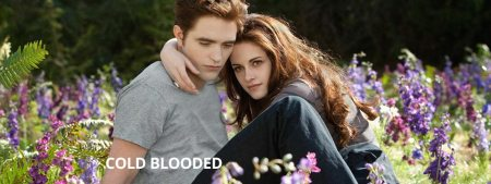 Breaking Dawn Part II (Filmkritik)