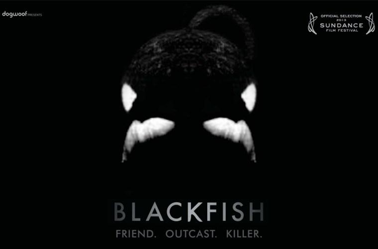 Kara Balık - Filmloverss