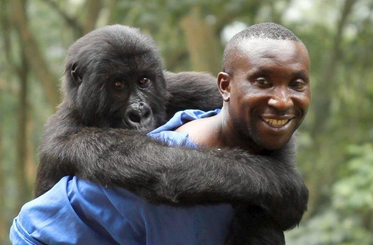 Virunga-filmloverss