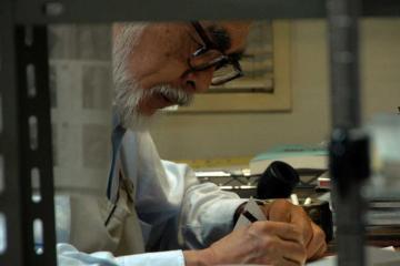 miyazaki-filmloverss