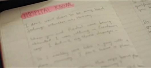 diary8-Filmloverss