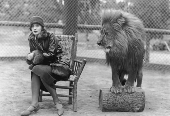 MGM-aslani-3-filmloverss