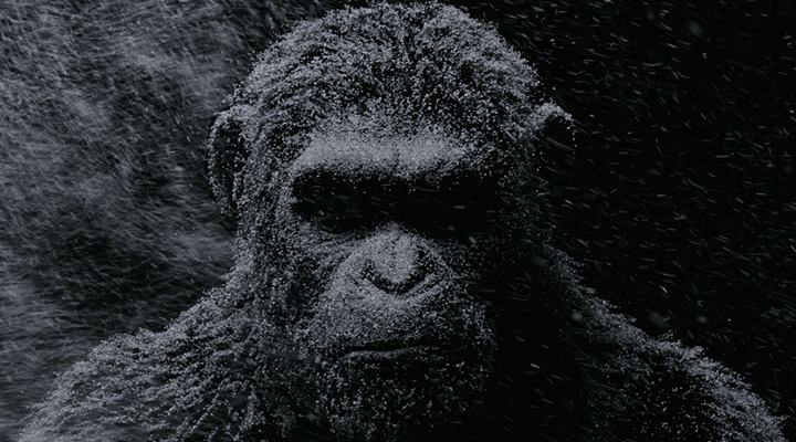 war-for-the-planet-of-the-apes-caesar-filmloverss