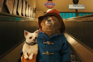 paddington-filmloverss