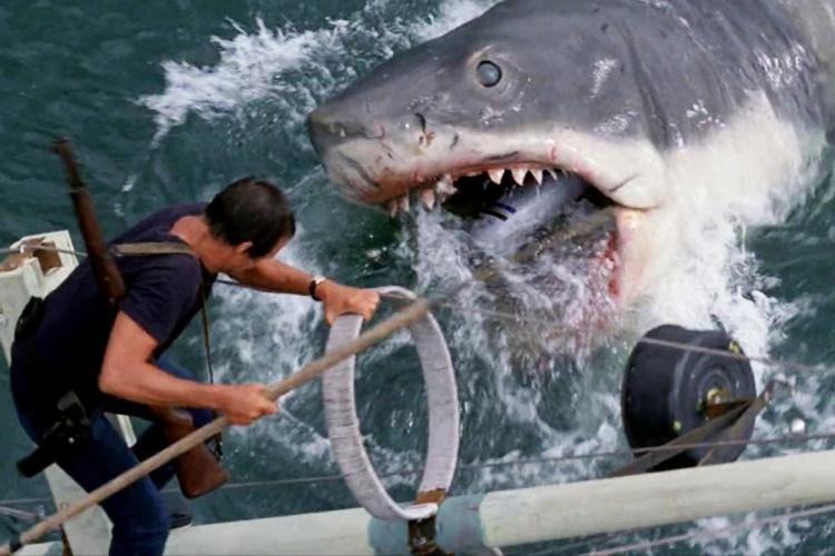 jaws-filmloverss