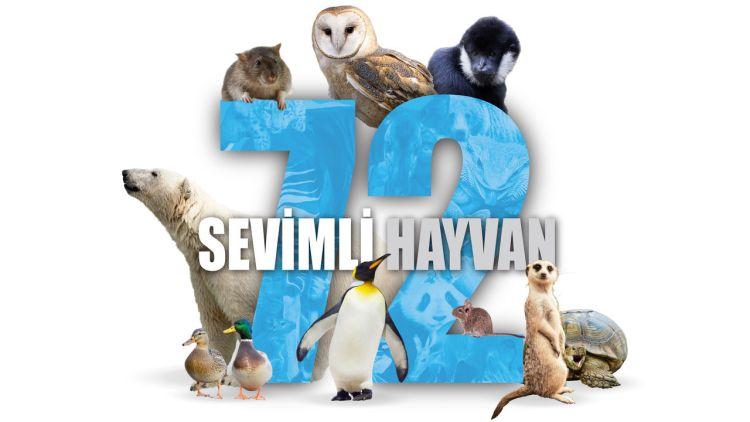 72-Sevimli-hayvan-filmloverss
