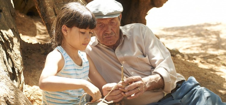 The Olive Tree (2017) Review
