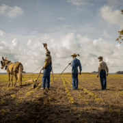 First Trailer Released For Mudbound Starring Carey Mulligan