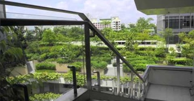 Singapore: Biophilic City (2012)
