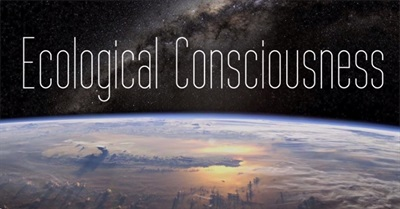The Evolution of Ecological Consciousness (2013)